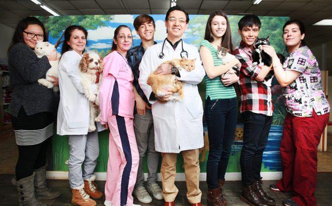 퀸즈 동물병원(ANIMAL HOSPITALS in Queens)- 뉴욕 퀸즈 동물병원