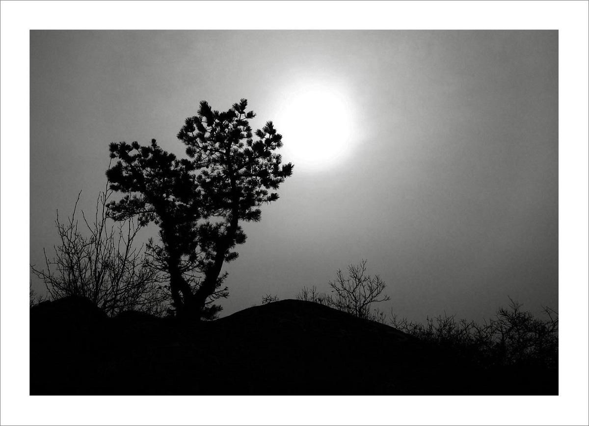 커피두잔[2014-03-28]