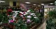 상권 좋은 뉴저지 꽃가게 좋은 가격에 급매 가격 다운 $25000!!