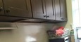 7 subway,Parsons blvd/37ave,heat,$1600